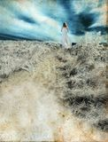 Woman Walking on Grunge Background Stock Image