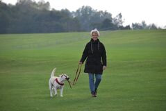 Woman walking her dog  Stock Photography