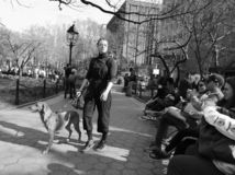 A woman walking her dog in New York City royalty free stock photography