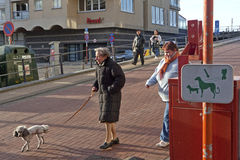 Woman walking her dog, Zeebrugge Royalty Free Stock Photos