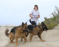 Woman walking with her dogs Stock Images