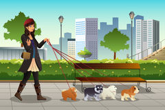 Woman Walking with Her Dogs. A vector illustration of beautiful woman walking with her dogs in the city Royalty Free Stock Photos