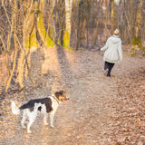 Woman walking her mixed bred dog. Stock Photo