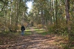 Woman walking, Holland Stock Photo