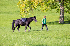 Woman walking with horse royalty free stock images