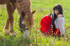 Woman walking a horse. Horseback riding on a summer day Stock Photos