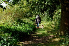 Woman Walking In The Green Forest With Her Dog Royalty Free Stock Images