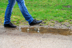 Woman walking inattentive into a puddle. Legs of a woman stepping into a puddle Stock Image
