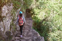 Woman walking on inca trail. View from back. Girl with backpack on hiking path royalty free stock images