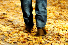 Woman walking on leaves Stock Photography