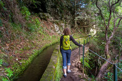 Woman walking on levada 25 fountains in Rabacal, Madeira island. royalty free stock images