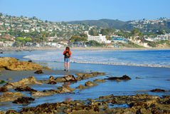 Woman walking on the Main Beach, Laguna Beach CA. Image shows a young woman with a Pomeranian in her  back pack walking on the Main Beach, Laguna Beach Royalty Free Stock Images