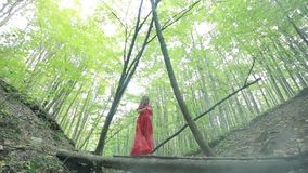 Woman Walking In Mysterious Forest stock video footage