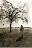 Woman walking near tree. Woman wearing a long coat, walking near a tree by a lake stock photos