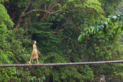 Free Woman Walking On Jungle Bridge Royalty Free Stock Photography - 25333967