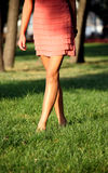 Woman walking on park with green grass royalty free stock image
