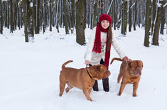 A woman is walking in the park with her dogs Royalty Free Stock Images