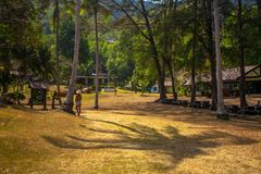 Woman walking on a path in the jungle Royalty Free Stock Image