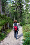 Woman walking on a path in the woods Royalty Free Stock Photography