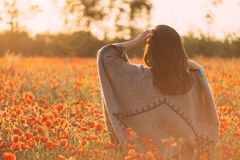 Woman walking in poppies meadow in spring at sunset. Unrecognizable woman wearing in poncho walking in red poppies flowers meadow at sunset outdoor, rear view royalty free stock image
