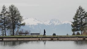 Woman walking on promenade with a bench next to Lake Etang Long in Crans-Montana, Switzerland during sunny spring day. Magnificent snow Alps in the background stock video
