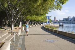 A woman walking by the river. A woman on a walking path near the river in the city Stock Image
