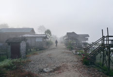 Woman walking on  road, Misty dawn in Chitwan Stock Photos