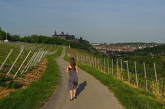 Woman walking on a road with Vineyard landscape view to the castle Marienberg in Wuerzburg Bavaria, Germany Royalty Free Stock Photo