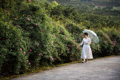 A woman walking rose garden Stock Photography