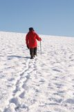 Woman walking in snow. Woman hiking alone up a snow covered hill in winter Stock Photography