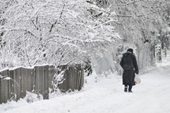 Woman walking on snowy road Stock Image