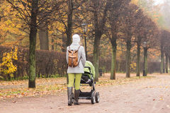 Woman walking with stroller in autumn park. Young woman walking with stroller in autumn park. Rear view Stock Image