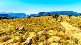 Woman walking to viewpoint at the Blyde River Canyon along the Panorama Route Stock Image