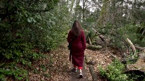 Woman walking on a trail through the green forest stock video footage