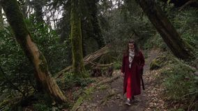 Woman walking on a trail through yew-boxwood grove, green forest in Khosta stock footage