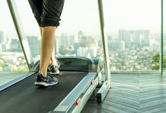 Woman walking on a treadmill exercise in the gym. In the morning Royalty Free Stock Photos