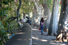 Woman walking on treelined sidewalk along the Tiber River in Rome Royalty Free Stock Photography