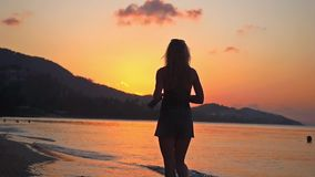 Woman walking in tropical beach at sunset in slow motion. 1920x1080. Hd stock video footage