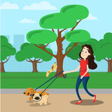 Woman walking with two dog. In the park Stock Photo