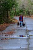 Senior woman walking two dogs royalty free stock photography