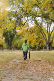 Woman walking with an umbrella in a park with yellow leaves falling from trees. In a city Stock Image