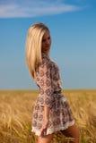 Woman walking on wheat field royalty free stock image