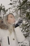 Woman walking in winter forest royalty free stock photos