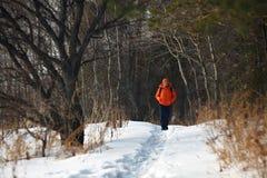 Woman walking in the wood stock photo