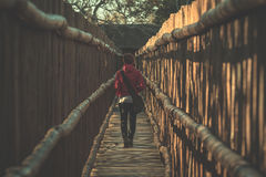 Woman walking in wooden narrow walkway. Protection for tourists in nature and wildlife reserve in South Africa. Concept of adventu Stock Photo