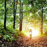 Woman walking in the woods Royalty Free Stock Photography