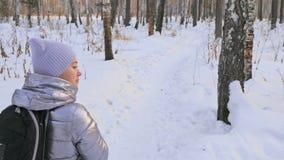 Woman is walking in the woods. Traveler is walk in birch forest in city park. Girl walks in evening time with beautiful. Beautiful woman is walking in the woods stock footage