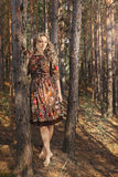 Woman walking in the woods among the trees in nature. Royalty Free Stock Photos