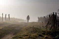 Woman walkng stock image