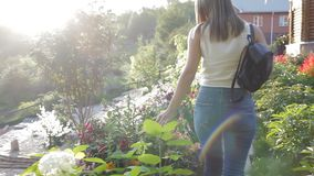 A woman walks along the path among the flowers. woman walking in the stone garden. woman with a female backpack walks in stock video footage